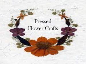 Pressed Flower Craft