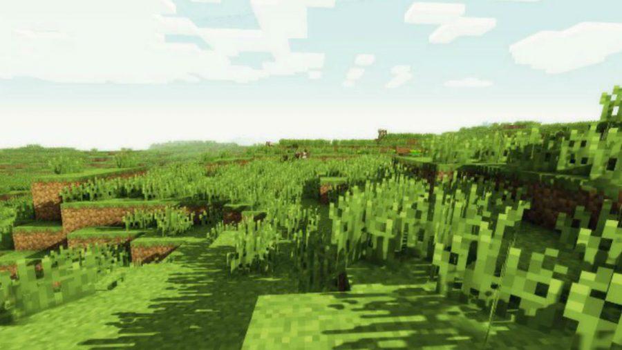 Minecraft after enabling OptiFine